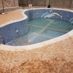 Bunga free board swimming pool